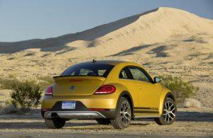 cropped-1168403_beetle-dune-3.jpg