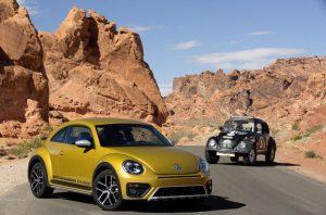 cropped-1168438_beetle-dune-16.jpg